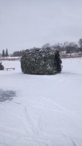 boughs warming hut