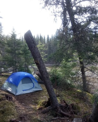 Backcountry camping.